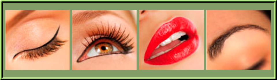 Swan Consulting Permanent Cosmetics | Maryland's Permanent